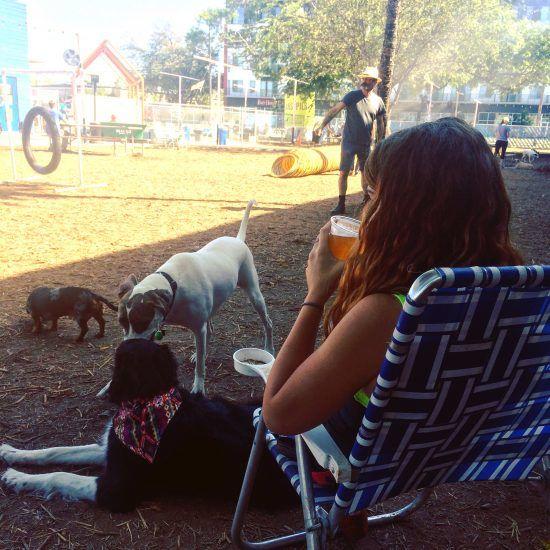 dog friendly places austin