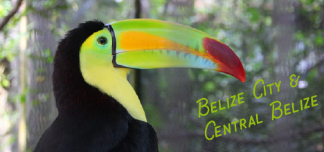 Belize city things to do