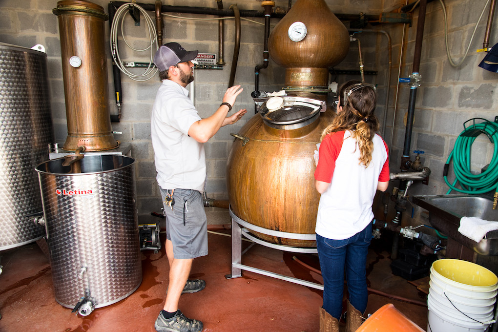real ale head distiller