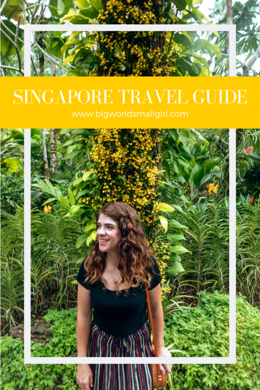 Singapore Travel Guides