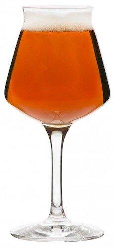 Teku Beer Glass