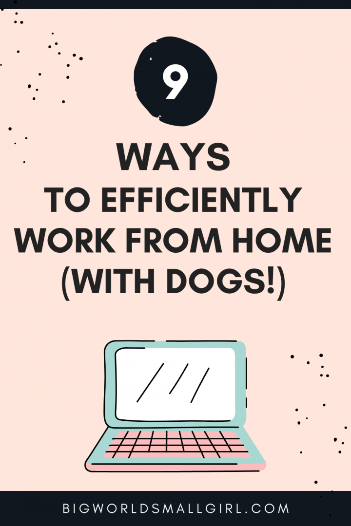 9 Ways to Efficiently Work from Home (with Dogs!)