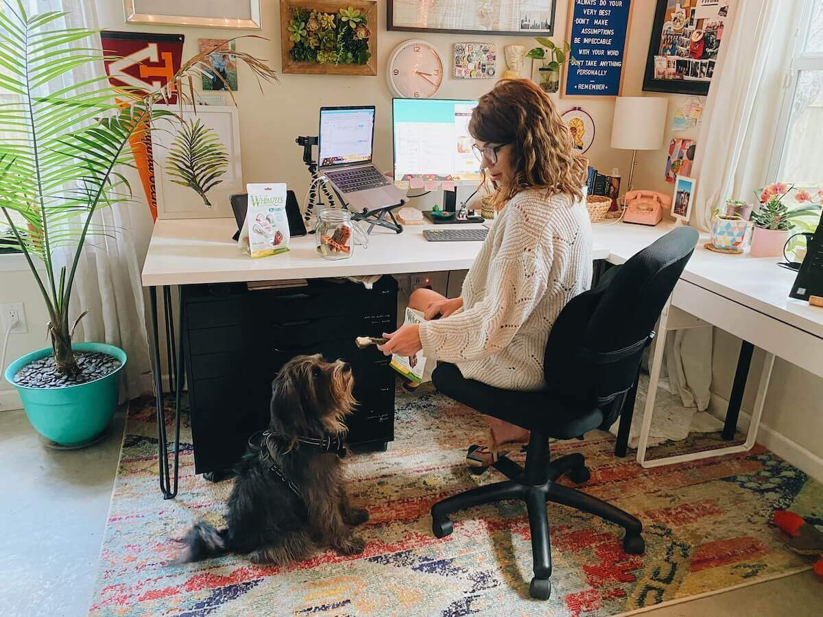 Working from Home with Dogs