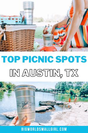Best Picnics in Austin